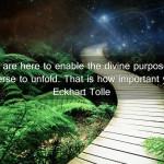 divinepurpose