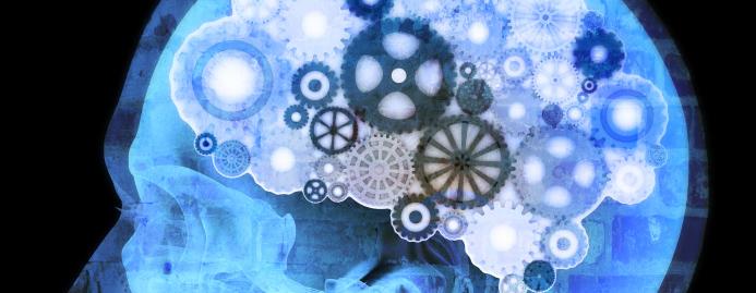 brainset